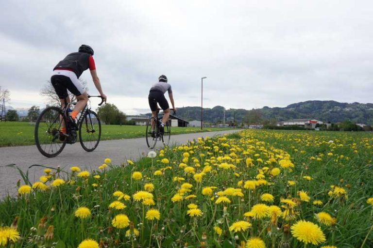 Bodensee Rennrad
