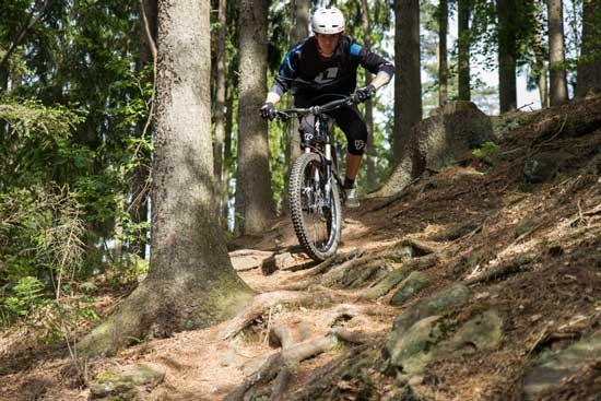 Gehrenberg Trailday